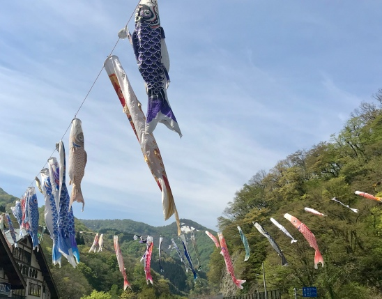 Koinobori carp streamers for Children's Day in May
